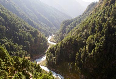 Dudh Kosi Valley radiates energy through beautiful pine and rhododendron forest.