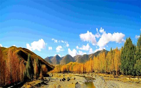 11 Days Amazing Western Sichuan Tour