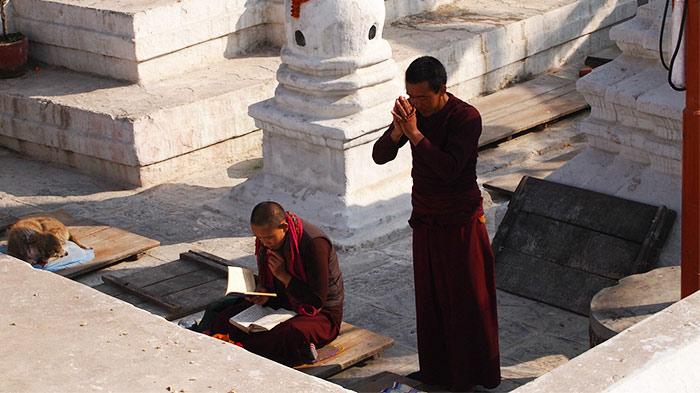 Tibetan Buddhism is sometimes called Lamaism.