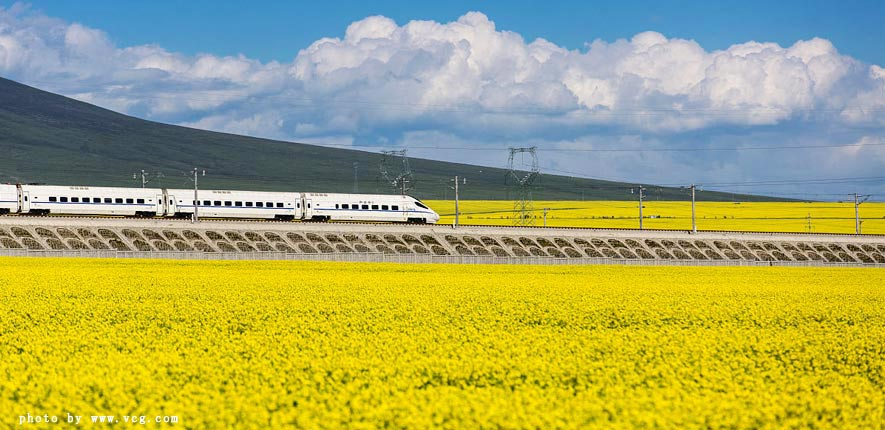 tibet train summer